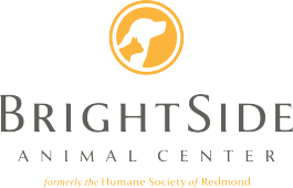BrightSide-Logo.png